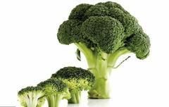 赘肉最怕此几种食物,每天吃一种,分解体内脂肪,体重轻松降