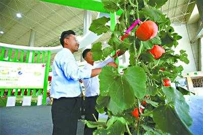 青海大力推动生态产业发展