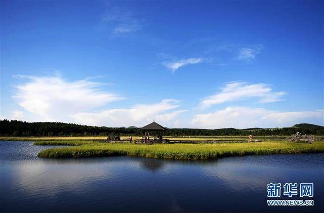 新华网评:同心绘就生态文明美丽画卷
