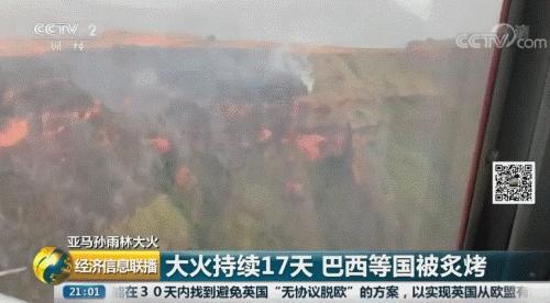 亚马逊雨林火灾持续17天 法总统要救火遭巴西反对