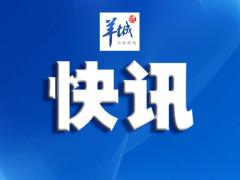 """""""珠海一号""""03组卫星发射成功"""