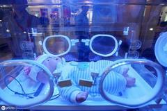 早产儿住院都经历了些啥?
