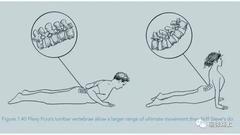 练瑜伽,如何超越身体的极限?