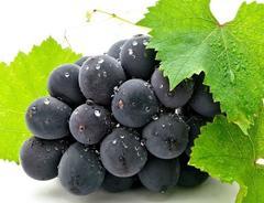 """秋吃""""葡萄""""好处多,可很多人不知,不能与3种食物同吃"""