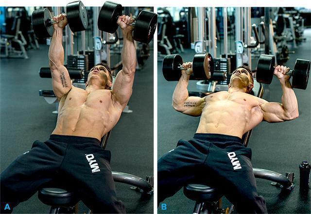 胸背肩臂腿分化适合新手吗?换成推拉蹲分化,增肌效果也许更好