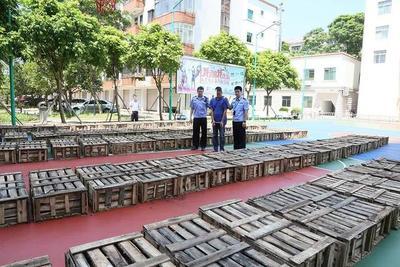 806条活鳄鱼被解救!东兴海关破获一起重大走私鳄鱼案