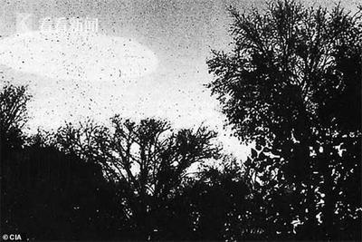 两兄弟坚称39年前看到两UFO 互相打斗后相继飞走