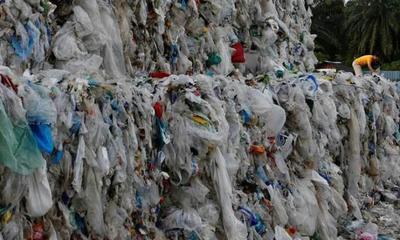 """中国拒收洋垃圾后,有国家差点被""""逼疯"""",反指责我国不负责"""