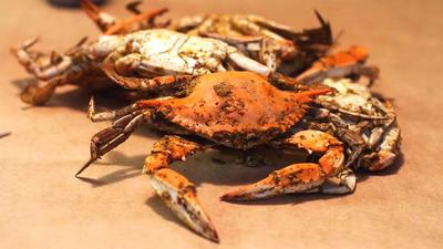"""对华出口涨219%!越南螃蟹拿到中国市场""""入场券"""",却又遇劲敌?"""