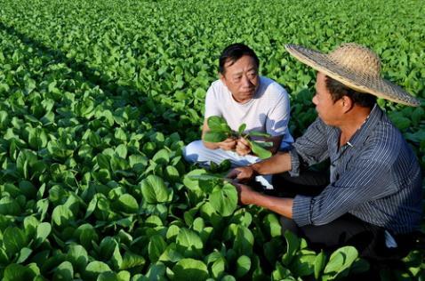 新华网评:让科技之光洒满希望的田野