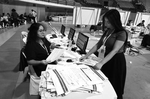 突尼斯总统大选中的妇女参与