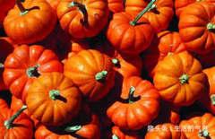 人到中年,冬天推荐常吃4种食物,养肝排毒,补益气血,改善体质