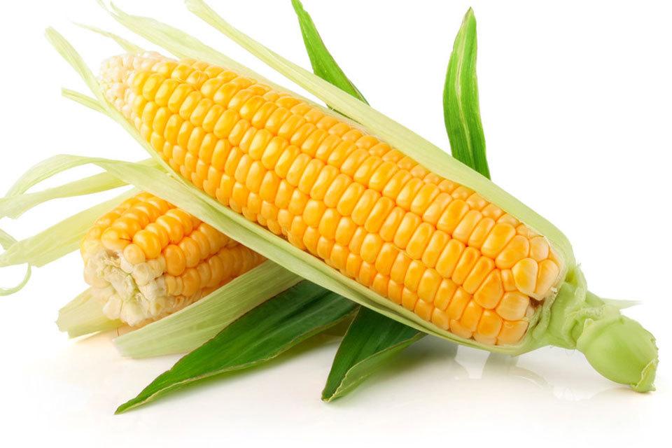 大蒜可以控制热量减肥,胡萝卜能降低胆固醇瘦身