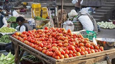 """巴基斯坦番茄价格飞涨 成堪比黄金的""""求婚利器"""""""