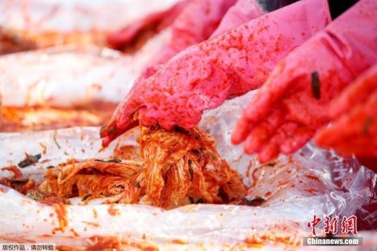 大白菜价格飙升 韩国腌泡菜成本增至近30万韩元