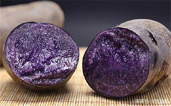 土豆萝卜靠边站,吃它等于20个猕猴桃40个苹果,4块钱一斤