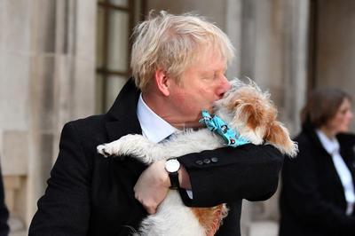 英国大选寒冬中登场!投票站大排长龙 约翰逊带爱犬出门投票