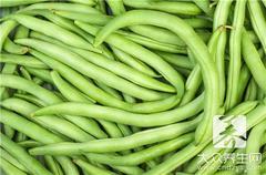 长豆角的营养价值:可以防止急性肠胃炎
