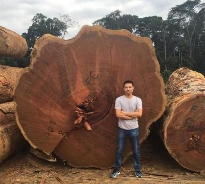 男子在非洲花费400万,买了几百吨垃圾木,黑人对此十分质疑