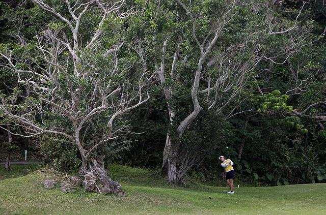 日本冲绳3月将如期举办女子高尔夫赛,受疫情影响观众席空无一人
