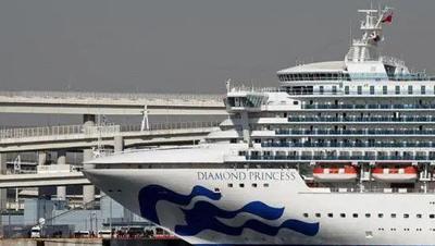 """""""钻石公主""""号23名下船者未经病毒检测,日本出现首例下船后确诊病例"""