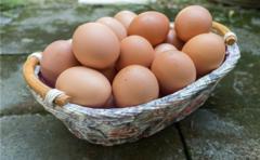 吃鸡蛋可提升记忆力,还能减肥保护视力