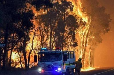 澳洲山火局势严峻,首都宣布进入紧急状态,美方请求中国出手援救