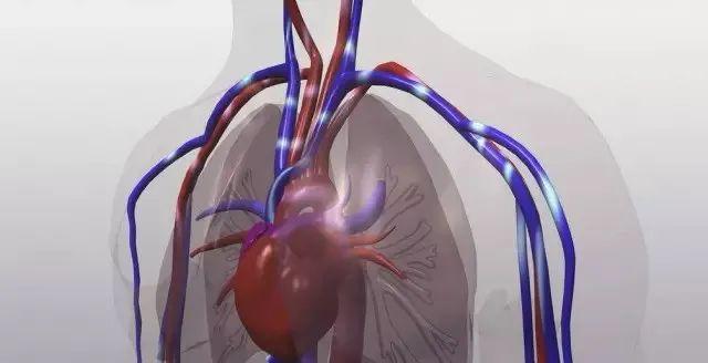 天天戴口罩会影响心肺功能吗?口罩:这个锅我不背