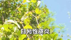 """深圳连续29天""""0新增""""!吃了这些东西,千万躲着太阳"""
