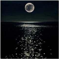 我们把在黑暗中跳舞的心脏叫做月亮