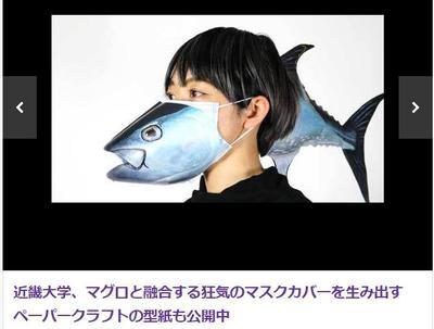 """日本一只猫引起的""""校园紧急事件"""""""