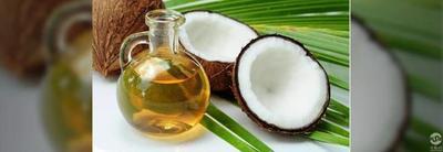 初榨椰子油能治新冠?菲律宾正式展开临床试验