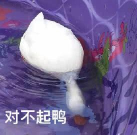 """表情包""""新系列:这么可爱的小鸭鸭,谁会来保存呢"""""""