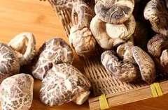 花菇的营养价值与作用功效竟然这么多,不知道的赶紧进来看看!