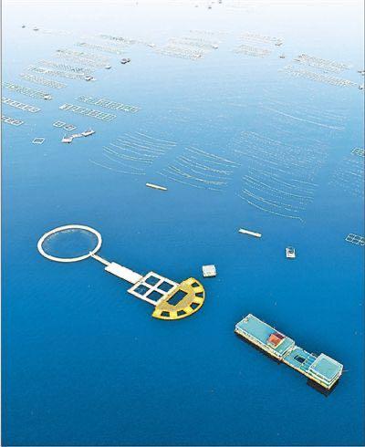 耕耘蓝色国土 壮大海洋经济