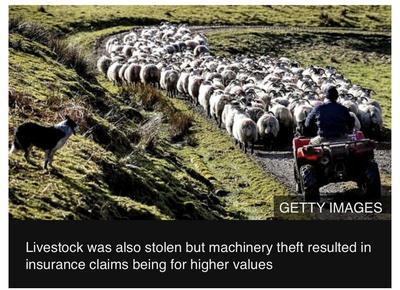 新冠疫情下英国乡村犯罪率飙升