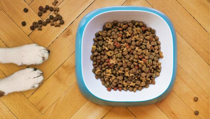 宠物食品是个20倍赛道,但现在不是入场好时机